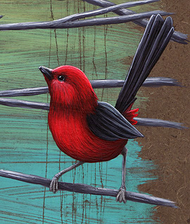 08-10-28_C3_Bird2
