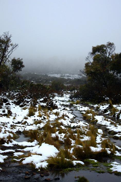09-01-30_Snow