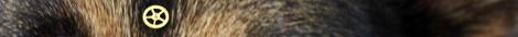 10-02-22_ShadowScale2
