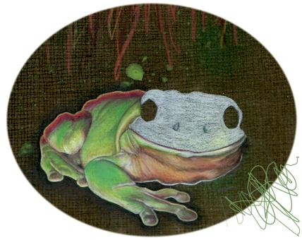 Facelessfrog