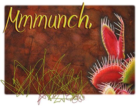 Mmmunch_2